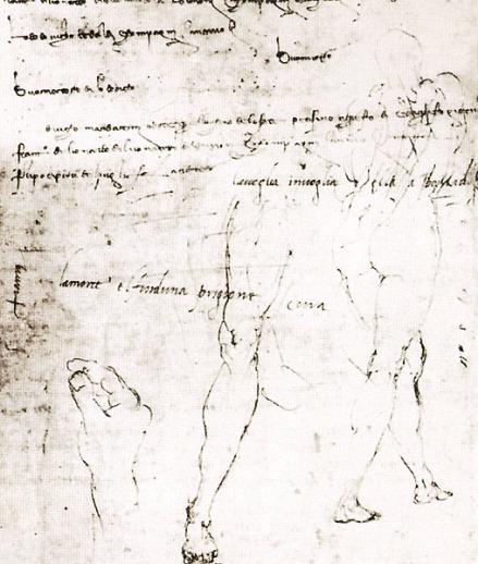 tratti di Michelangelo