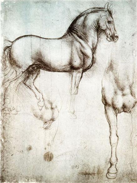 cavallo leonardesco