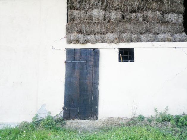 porta bluastra